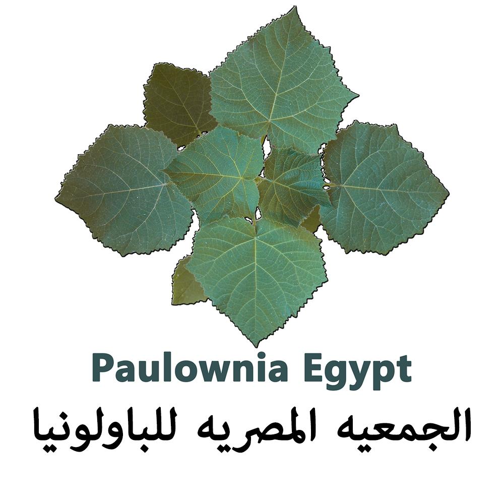 الجمعيه المصريه للباولونيا